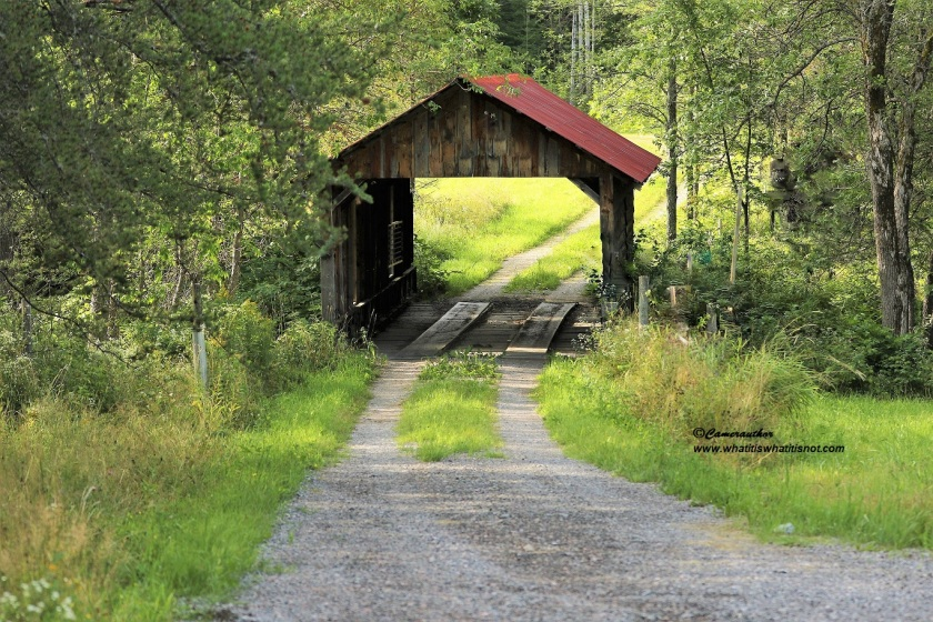 covered bridge near creek