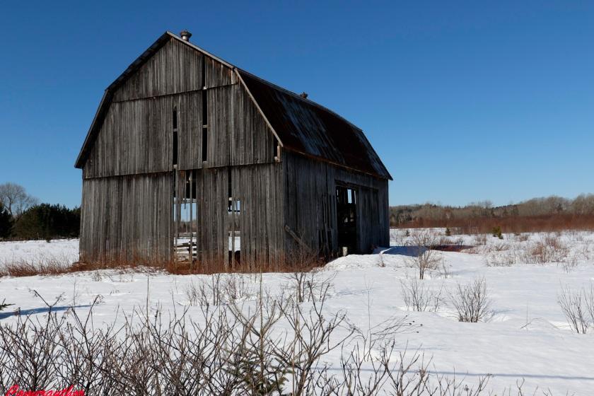 blog photo 186 barn & snow