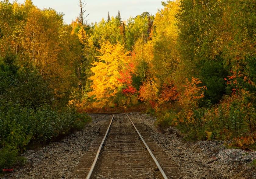 blog photo 204 railroad